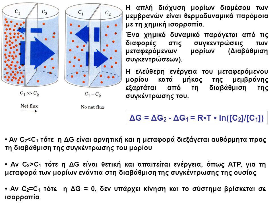 ΔG = ΔG2 - ΔG1 = R•T • ln([C2]/[C1])